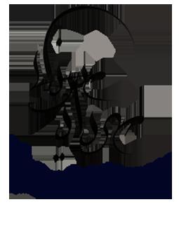 آتلیه مهرداد میرزایی